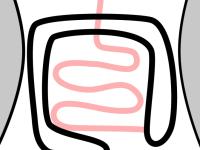 スクリーンショット 2015-08-19 4.28.52